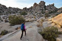 Hiker exploring Mojave Desert, Joshua Tree National Park, California - stock photo