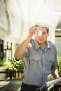 Scientist looking at liquid in plant growth research facility greenhouse Stock Photos