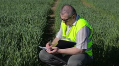 Farmer writing at the green cereal field Stock Footage