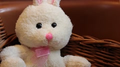 (Dolly Out) Easter Bunny Stuffed Animal in Basket Stock Footage