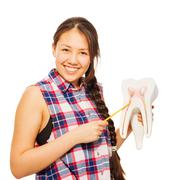 Smiling Asian girl with pointer and tooth model - stock photo