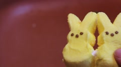 Two Marshmallow Peep Bunny Candies Joined By One With No Ears - stock footage