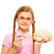 Schoolgirl in glasses holding cerebrum model Kuvituskuvat