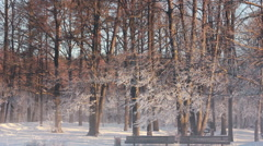 Winter park with park benches, river and winter trees in bright orange sunlight Stock Footage