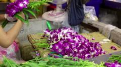 Orchids at Bangkok flower market - stock footage