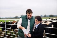 Business woman advising farmer Stock Photos