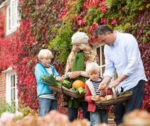 Family picking seasonal vegetables Stock Photos