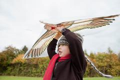 Boy flies a kite - stock photo