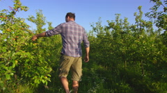 Farmer inspecting crops on the farm Stock Footage