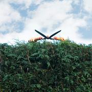Man pruning hedges Stock Photos