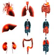 heart organ pain 3d rendering - stock illustration