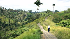 People walking in jungle in Bali  Stock Footage