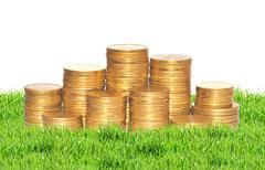 golden coins on green grass isolated on white. Ukrainian coins - stock photo