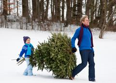 Father and son carrying christmas tree - stock photo