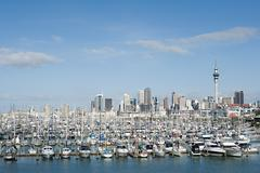 Auckland skyline - stock photo