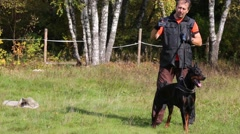 Man is dog trainer with doberman pinscher in meadow on summer day Stock Footage
