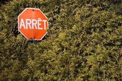 Stop sign in hedge - stock photo
