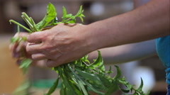 Farmer putting herbs in order before the market Stock Footage
