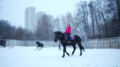 Girl rides on black horse on leash during snowfall at winter day Stock Footage