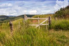 Brazilian tropical landscape - stock photo