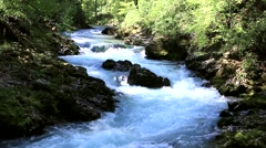 Stream in the gorge of Vintgar in Slovenia Stock Footage