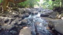River. National Reserve Bhagwan Mahavir Stock Footage