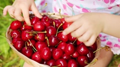 Basket with red wet cherry and hands of little girl on grass Stock Footage