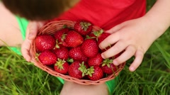 Basket with red strawberries and hand of little boy on grass Stock Footage