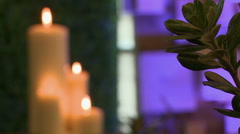 Close-up of green plant and lighted candles Stock Footage