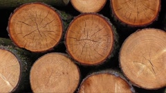 Pile of wood logs ready for winter Stock Footage
