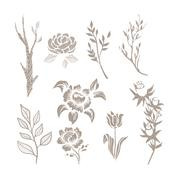 Hand Drawn Plant Monochrome Set - stock illustration