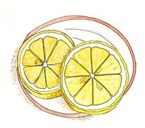 Watercolor drawing - lemon slices on a plate - stock illustration