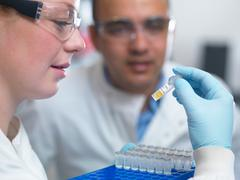 Scientists preparing to analyse samples from clinical trial, Jenner Institute, Stock Photos