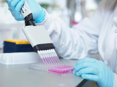 Scientist using multi-channel pipette to fill multiwell plate for analysis of Stock Photos