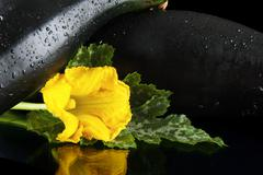 Cropped view of two courgettes with flowers on black background - stock photo