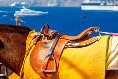 Fira. Donkeys on the island of Santorini - stock photo