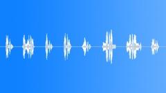 President - sound effect