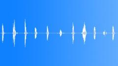 Vote - sound effect