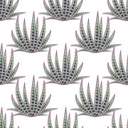 Agave succulent desert seamless pattern Stock Illustration