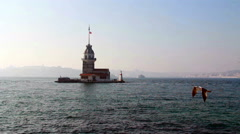 The Maiden's Tower fly seagull - stock footage