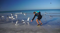 Person Chasing Seagulls on The Beach With Glidecam - stock footage