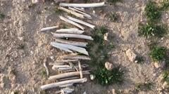 Following a line of broken bones at a mass grave in Sinjar Iraq Stock Footage