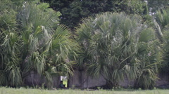 View of hut in village Stock Footage