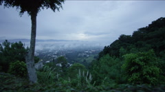 View of beautiful forest, Guatemala - stock footage