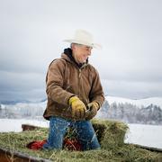 Caucasian farmer kneeling in hay Kuvituskuvat