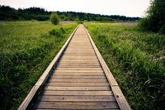 Wooden walkway in rural field - stock photo