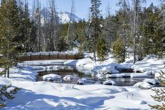 Footbridge over river in snowy forest Stock Photos