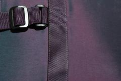 Purple buckle Stock Photos