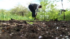 Man digging shovel in the garden Stock Footage