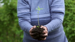 Woman holding a sapling of the flower with soil Stock Footage